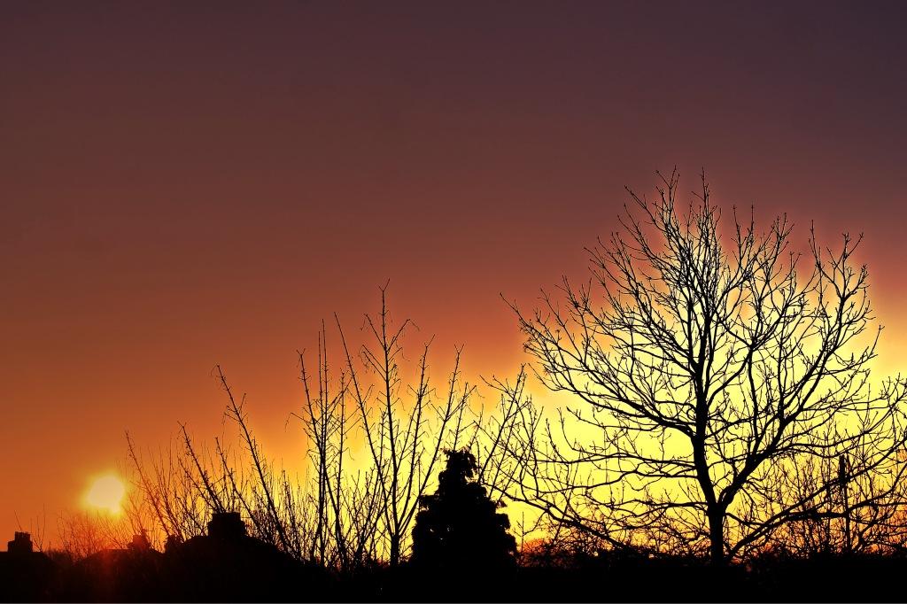 sunrise overwhelms all
