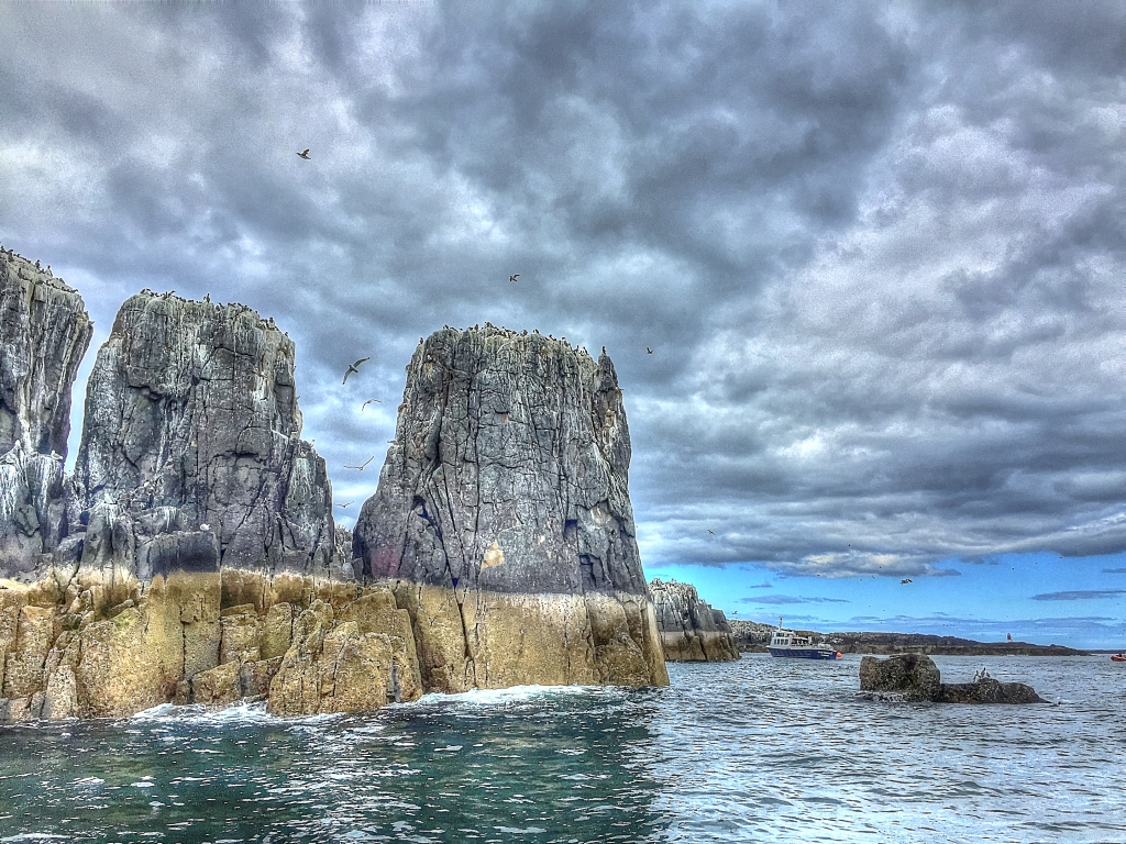 farne islands with boat approaching