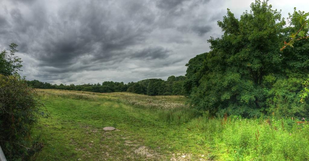 field from Midgery Lane