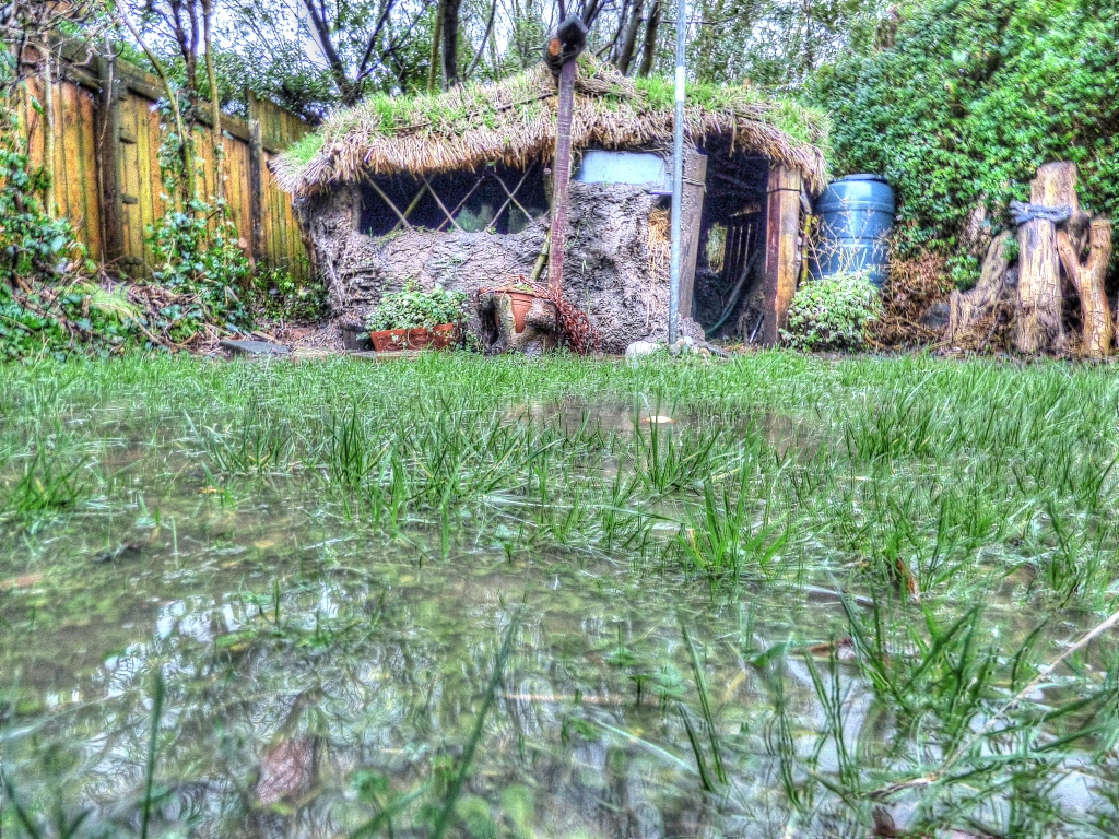 wet garden